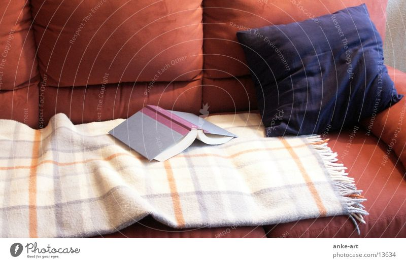 Book Living or residing Sofa Blanket Cushion Wool blanket