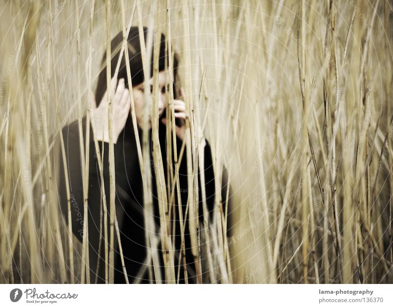 Woman Loneliness Grass Coast Gray Sadness Lake Earth Think Dream Perspective Gloomy Grief Mysterious Common Reed Virgin forest