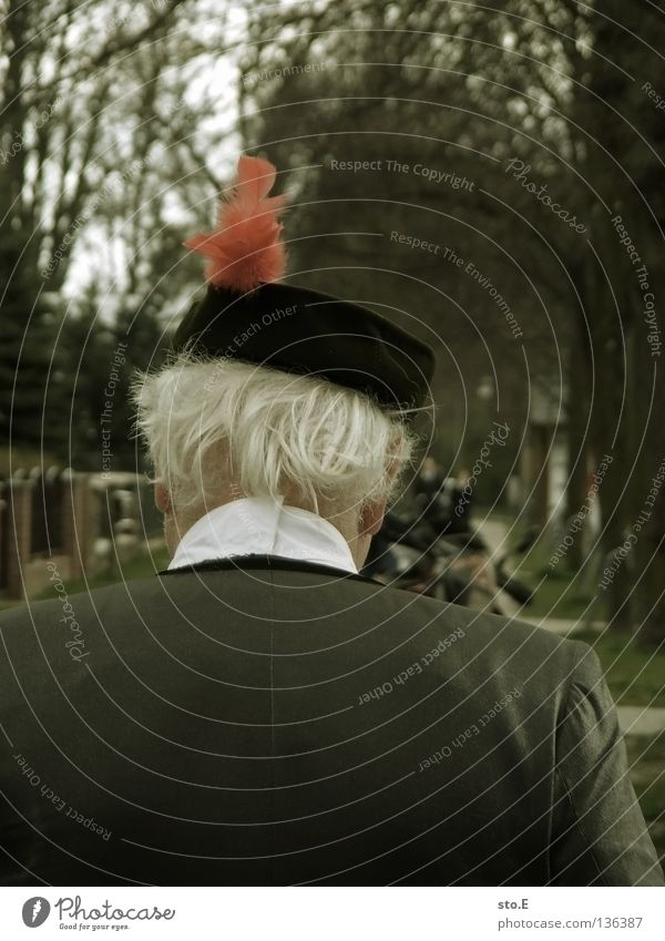 red feather Man Masculine Cap Rear side Back of the head White White-haired Red Suit Avenue Tree Traffic infrastructure Clothing Human being Hat Backwards