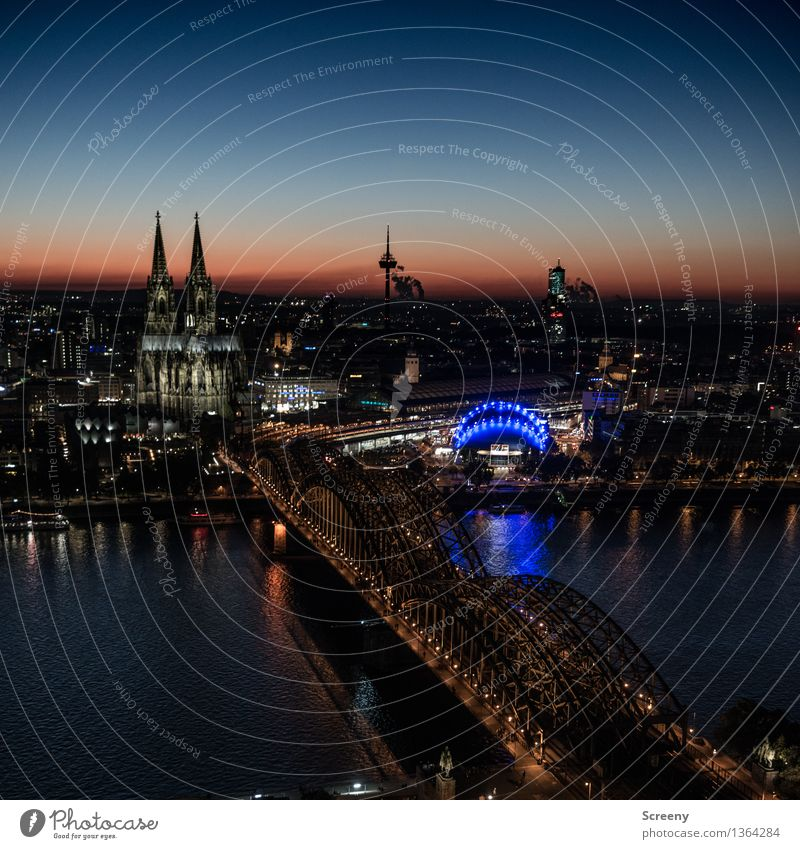 Lights on, Kölle... Landscape Sky Cloudless sky Horizon Beautiful weather River Rhine Cologne Germany Europe Town Downtown Skyline House (Residential Structure)