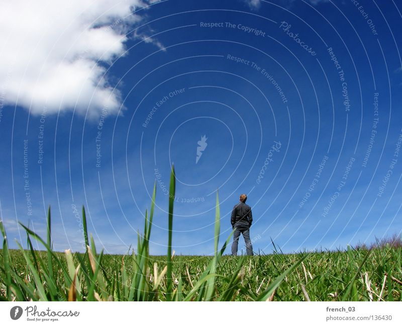 Human being Sky Blue Hand Green White Clouds Loneliness Meadow Freedom Gray Grass Small Sadness Think Spring