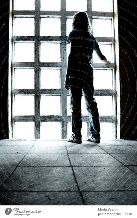 Man Loneliness Cold Emotions Window Dream Sadness Think Moody Empty Grief Transience Pain Concentrate Distress Goodbye
