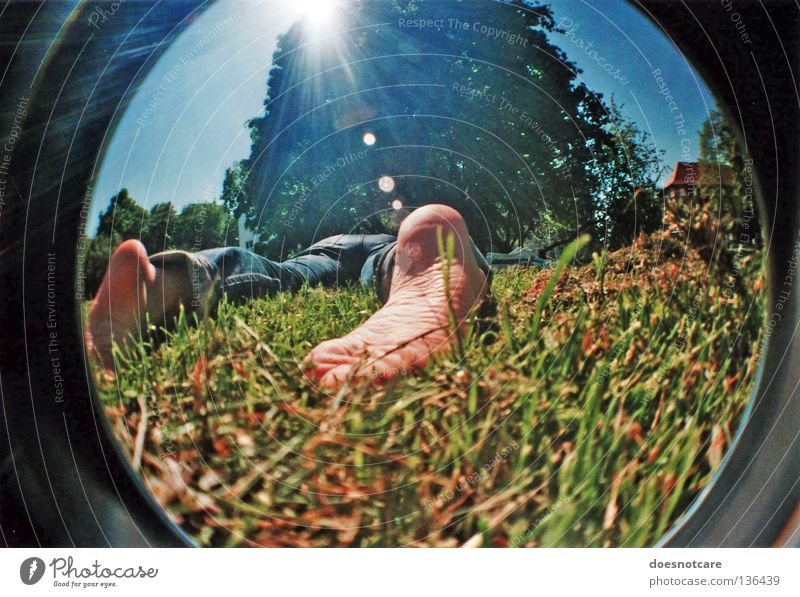 lying in the green grass... Relaxation Summer Sun Feet Tree Meadow Sleep Lomography Wide angle Fisheye Sole of the foot Lens flare Back-light Sunbeam Sunlight