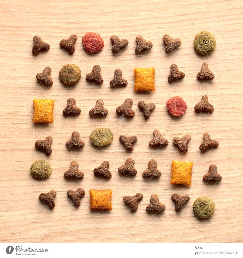 Cat food, mixed up Meat dried fodder To feed Triangle Rectangle Round Small Delicious Brown Yellow Green Red Colour photo Multicoloured Interior shot Close-up