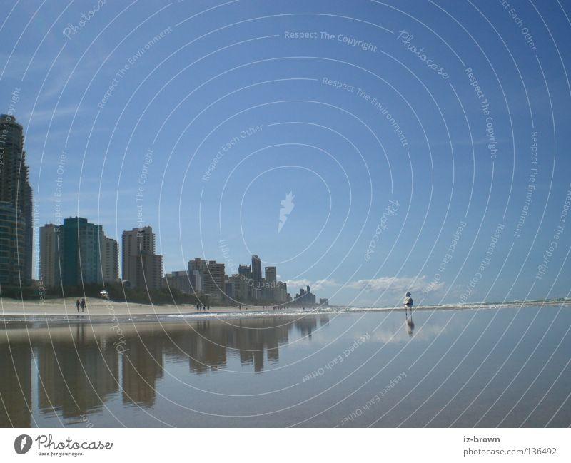 Nature Ocean Beach Far-off places Relaxation Freedom Coast Tall Near