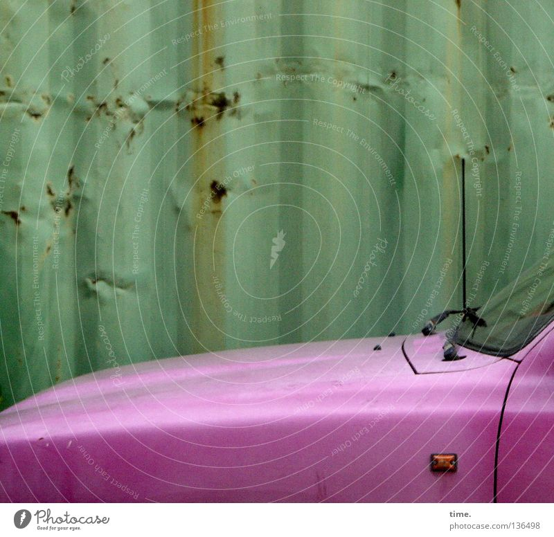 The treasure from the backyard Pink Steel Tin Windscreen Antenna Parallel Car Hood Contrast green Motor vehicle Havana Varnished Backyard Diva Transience