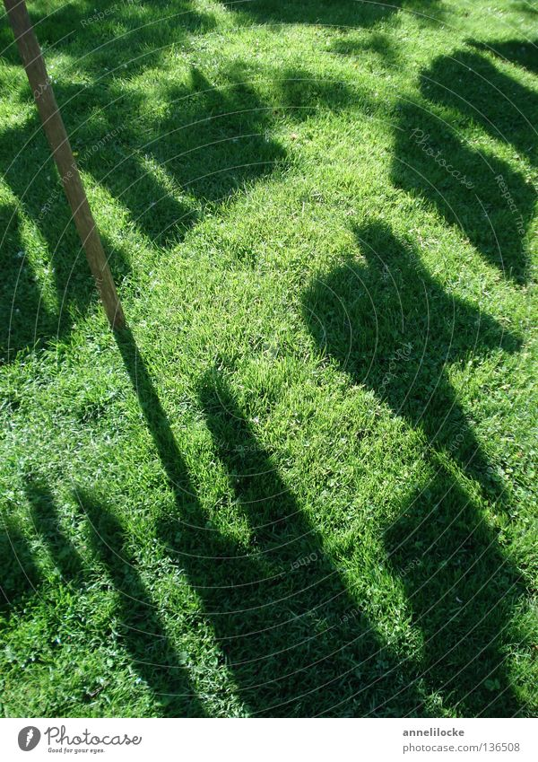 Green Black Meadow Grass Clothing Lawn Washing Laundry Visual spectacle Household Hang up Shadow play Housekeeping Washing day
