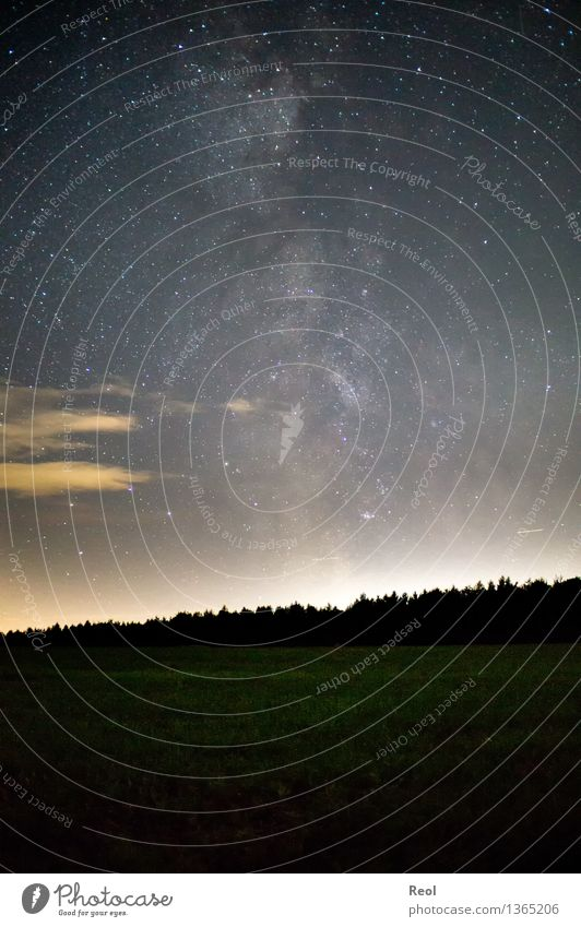 Milky Way Environment Nature Landscape Elements Sky Cloudless sky Night sky Stars Horizon Autumn Meadow Dark Gigantic Infinity Night shot Milky way Universe