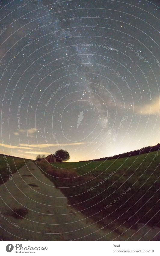 Milky Way III Nature Landscape Elements Sky Cloudless sky Night sky Stars Horizon Meadow Field Dark Lanes & trails Footpath Milky way Universe Astrophotography