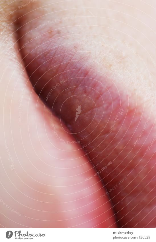 Red Laughter Line Mouth Pink Skin Corner Lips Delicate Valley Gutter Pore Corner of the mouth