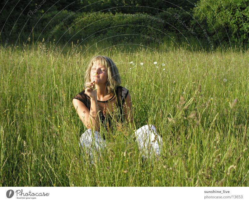 Woman Flower Summer Relaxation Meadow Grass