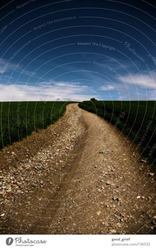 Sky Green Blue Clouds Meadow Grass Mountain Stone Lanes & trails Field Dirty Earth Peace Upward Beautiful weather Gravel
