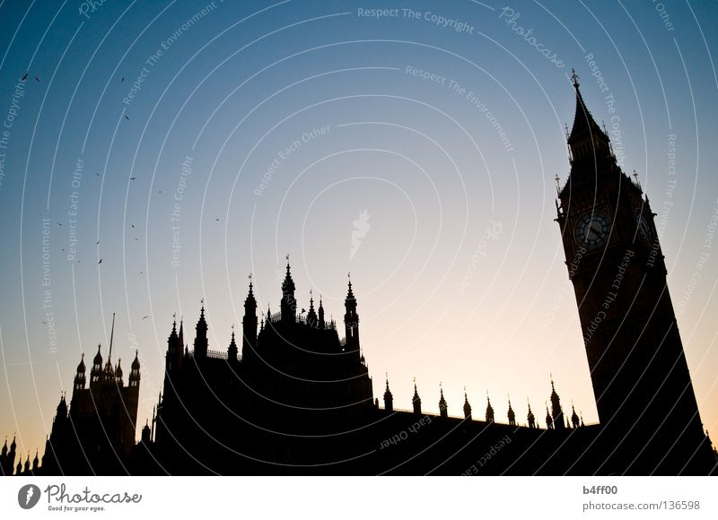 sightseeing silhouette London Black Back-light Bird Sightseeing Manmade structures Big Ben Houses of Parliament Sunset Large Threat England Politics and state
