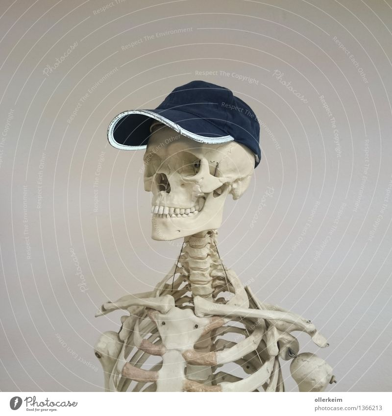 Blue White Sports Gray Head Body Fitness Cool (slang) Cap Hat Sportsperson Death's head Collarbone
