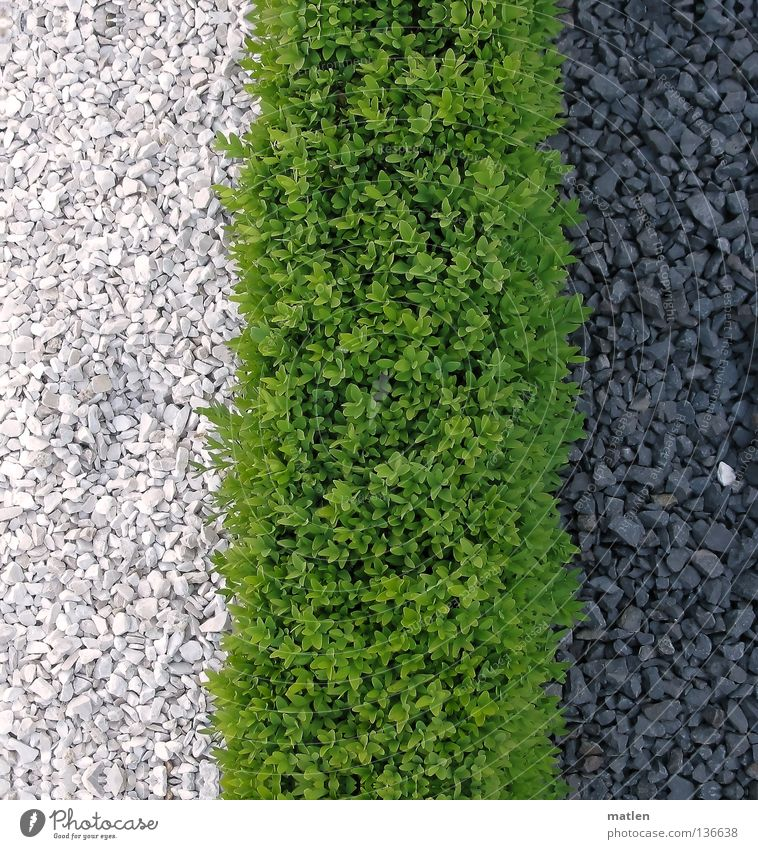 White Green Black Garden Traffic infrastructure Share Stone Gravel