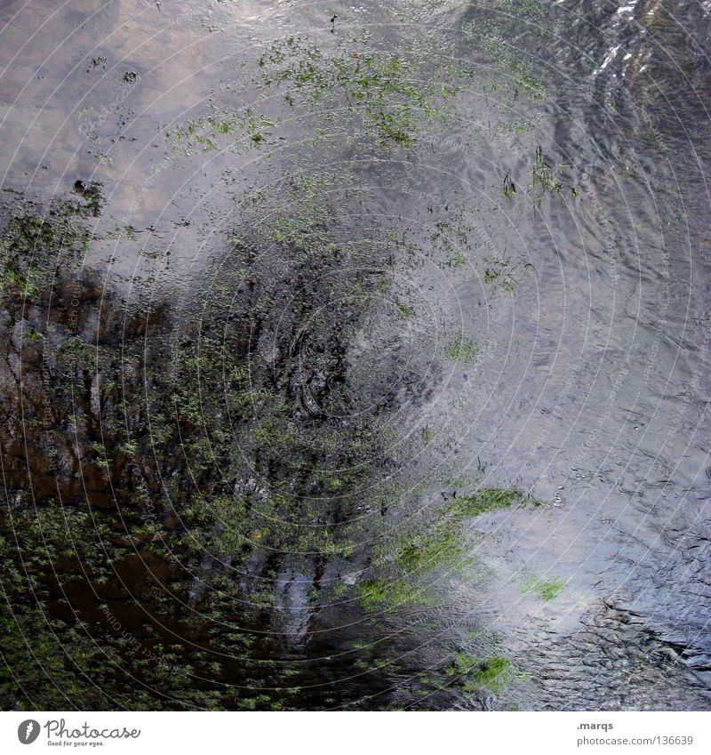 turbulence Wet Algae Flow Fluid Liquid Muddled Weather Storm Dark Gloomy Tree Reflection Painting and drawing (object) Abstract Painted Obscure Water Part