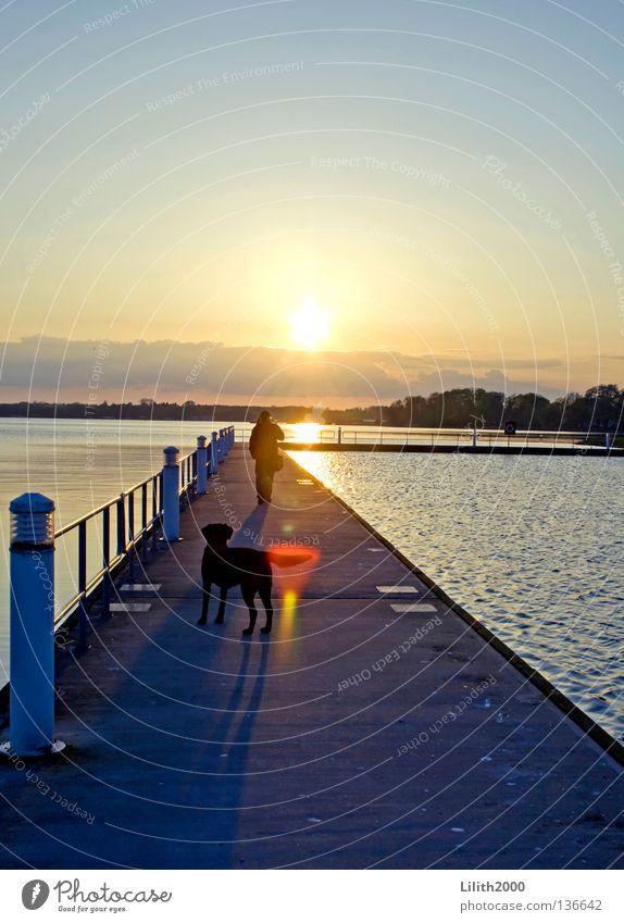 Human being Water Sky Sun Ocean Blue Vacation & Travel Black Yellow Far-off places Dog Lanes & trails Lake Horizon Footbridge Handrail