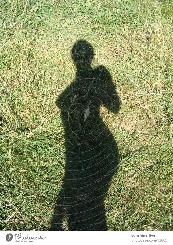 shadow play Meadow Posture Woman Sun Nature Shadow