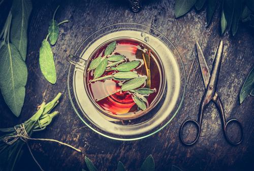 Herbal tea with sage Herbs and spices Beverage Hot drink Tea Plate Cup Style Alternative medicine Healthy Eating Life Senses Relaxation Fragrance Cure
