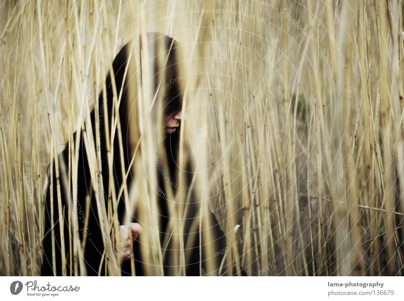 Woman Loneliness Grass Lanes & trails Coast Gray Sadness Lake Earth Think Dream Perspective Gloomy Search Grief Lips