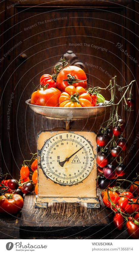 Various colorful tomatoes on vintage scales Food Vegetable Nutrition Organic produce Vegetarian diet Diet Style Design Healthy Eating Life Summer