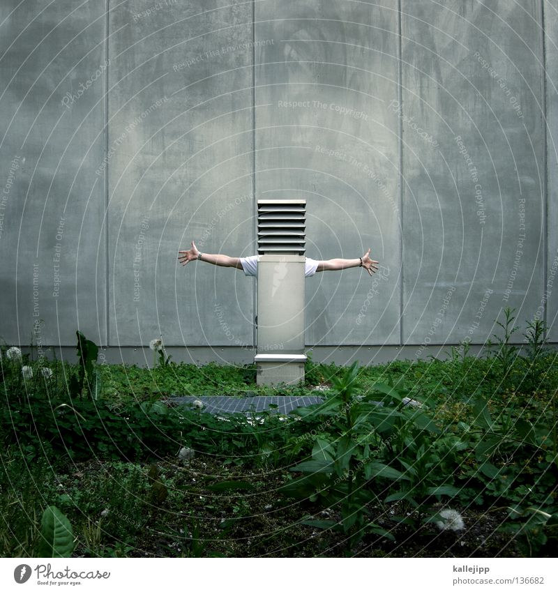 Human being Man Green Face Meadow Style Grass Garden Gray Wall (barrier) Air Art Architecture Funny Arm Concrete