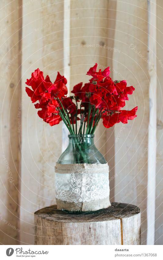 red flower Bottle Lifestyle Elegant Style Joy Harmonious Leisure and hobbies Adventure Freedom Dream house Interior design Decoration Event Flower pea Linen