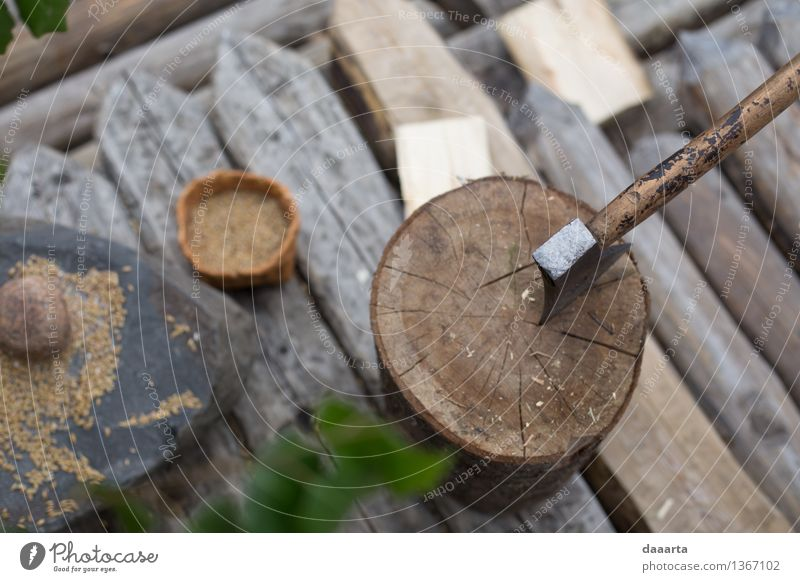 work place Nature Tree Joy Life Style Playing Wood Lifestyle Freedom Moody Work and employment Design Wild Leisure and hobbies Elegant Authentic