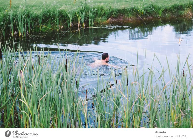 evening swim Nature Summer Relaxation Joy Environment Life Emotions Grass Style Healthy Playing Lifestyle Freedom Swimming & Bathing Lake Moody