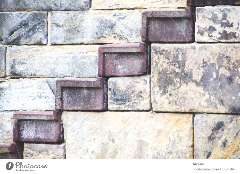upgrade Goslar Palace Castle Wall (barrier) Wall (building) Stairs Facade Tourist Attraction imperial palace Level Stone Cuboid Blue Gray Red Determination