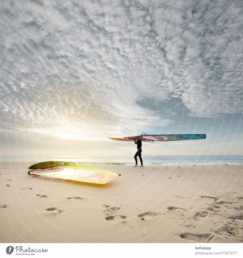 Human being Sky Vacation & Travel Youth (Young adults) Man Water Ocean Clouds Beach 18 - 30 years Adults Coast Sports Lifestyle Freedom Horizon