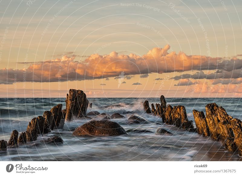 Nature Vacation & Travel Old Water Relaxation Ocean Landscape Calm Clouds Beach Coast Horizon Tourism Idyll Romance Baltic Sea