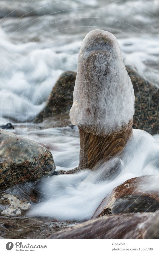 Nature Vacation & Travel Old Water Relaxation Ocean Landscape Beach Winter Cold Coast Stone Rock Idyll Frost Baltic Sea