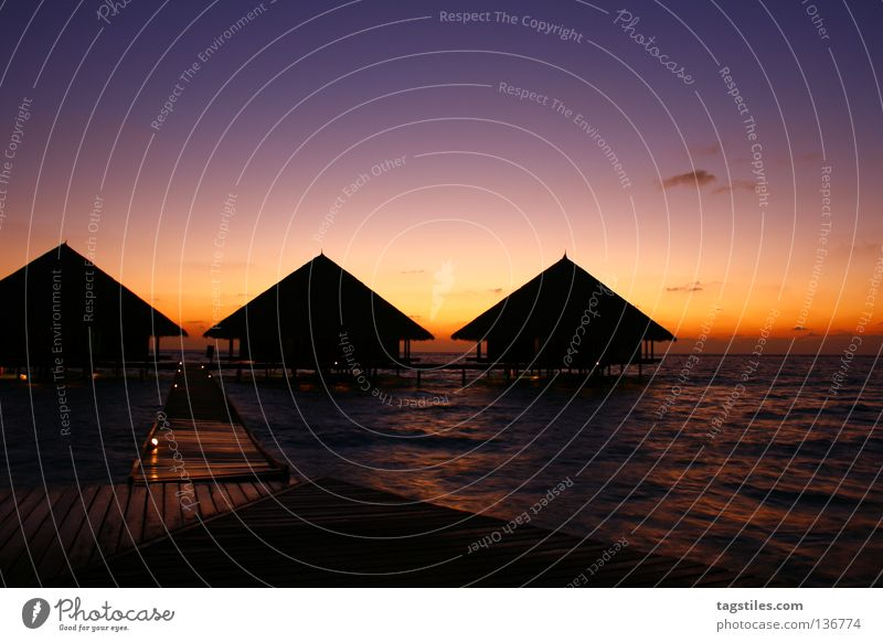 Sun Ocean Summer Beach Vacation & Travel Relaxation Coast Asia Arrow Direction Footbridge India Upward Maldives Progress Sunset