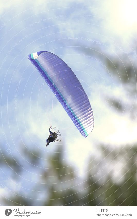parachute Elegant Joy Happy Leisure and hobbies Paragliding Vacation & Travel Trip Freedom Observe Movement To fall To hold on Flying To enjoy Hang To swing