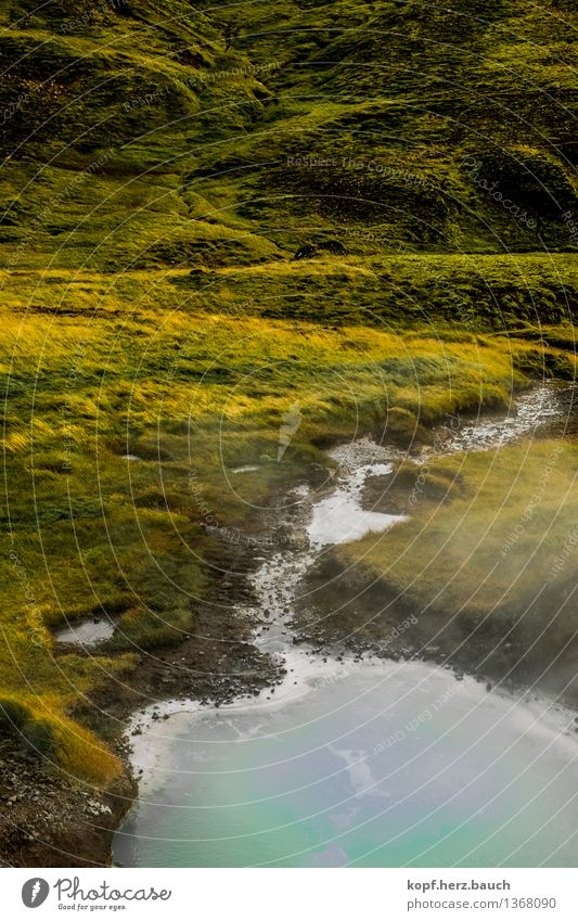 At the source Environment Moss Mountain Brook River water source Iceland Purity Thirst Longing Wanderlust Beginning Contentment Mysterious Hope Inspiration Pure