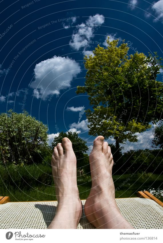 Summer Joy Vacation & Travel Relaxation Garden Feet Leisure and hobbies Couch To enjoy Human being Blue sky Comfortable Deckchair Sunday Weekend Garden plot