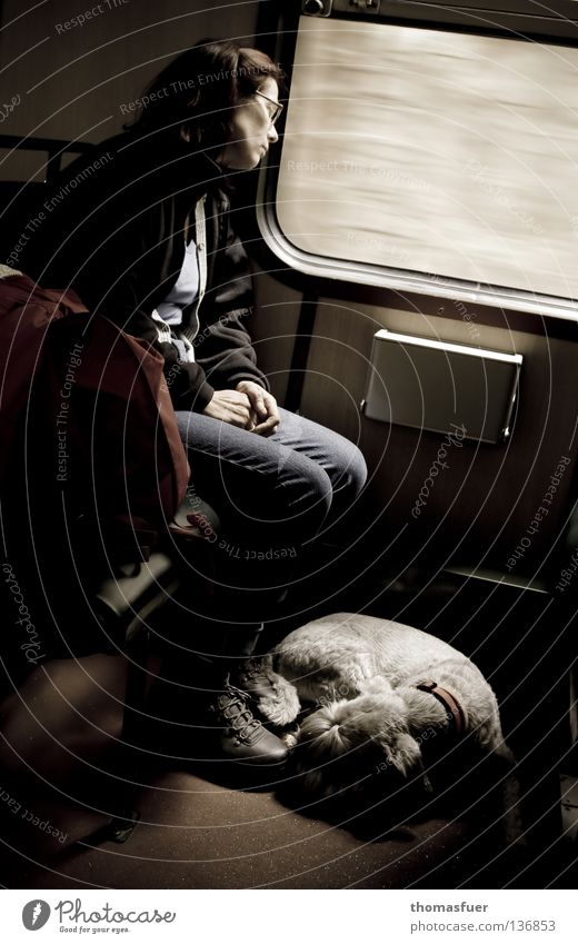 there, away or nowhere Vacation & Travel Woman Adults Transport Train travel Bus Railroad Dog Movement Dream Sadness Modest Boredom Grief Loneliness Target