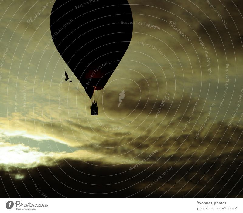 Freedom Hot Air Balloon Moody Summer Dark Black Yellow White Clouds Above the clouds Event Events Excursion Driving Pilot Go up Beginning Ease Airplane Hover