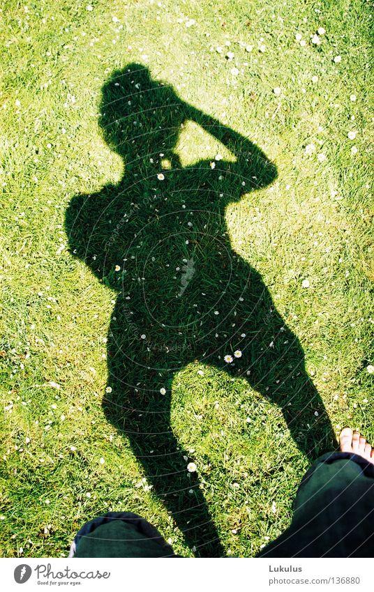 shadow journalist Wind Summer Grass Alert Shadow Bright Contentment Freedom