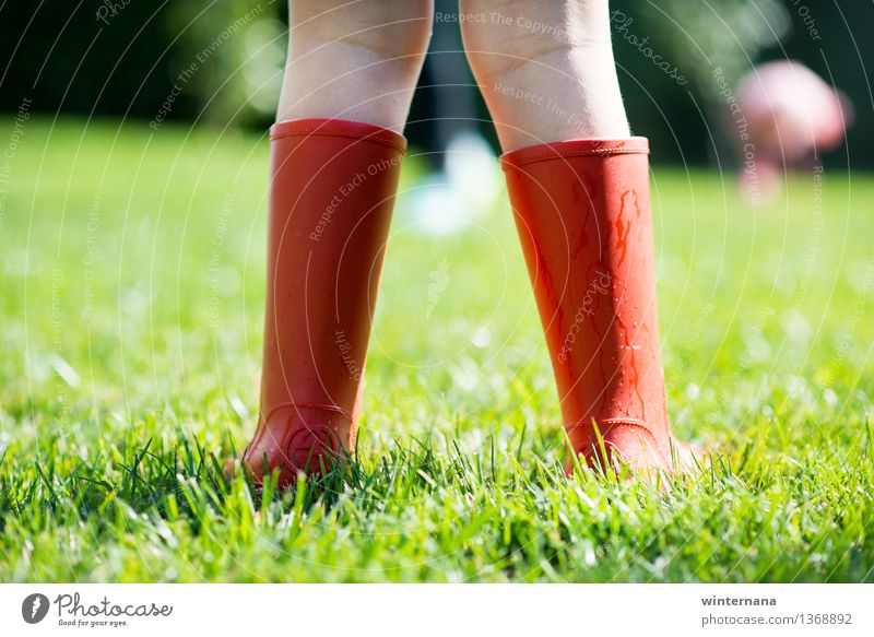 red boots on the green gras Human being Child Sun Joy Girl Spring Grass Garden Freedom Rain Earth Infancy Drops of water Idea Rubber boots 3 - 8 years