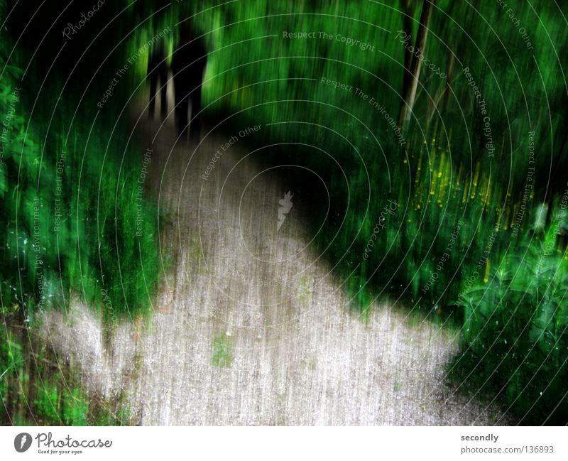 shady umbrage Forest Green Black Dark Shadowy existence Dark side Transience Fear Panic Lanes & trails Death End of the tunnel Blur