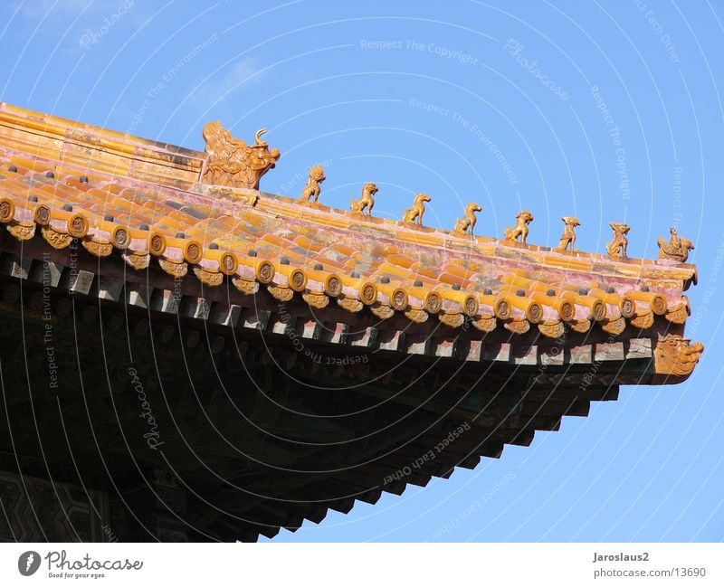 Chinese temple roof China Beijing Forbidden city Architecture Detail