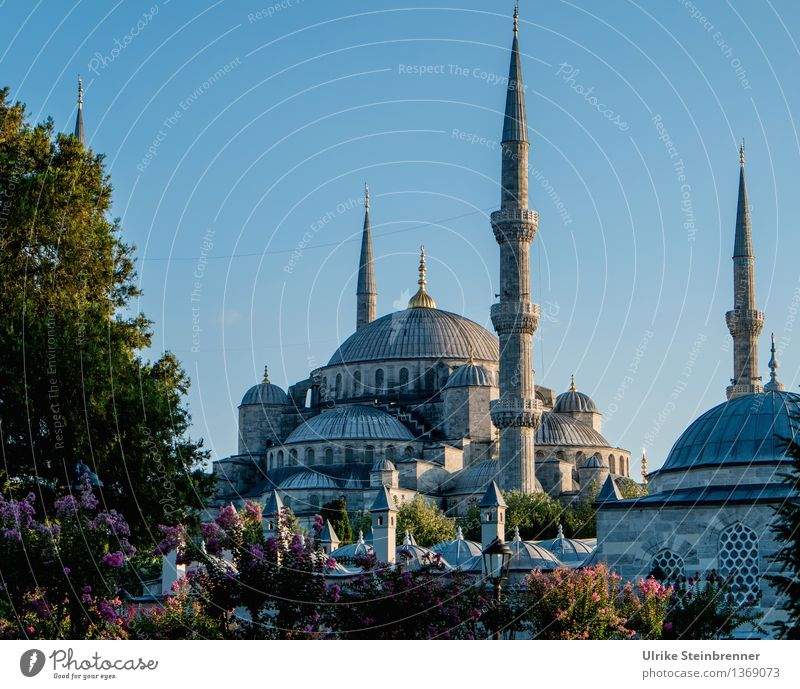 Minarets 3 Vacation & Travel Tourism Sightseeing City trip Istanbul Turkey Manmade structures Building Architecture Mosque Tower Tourist Attraction Stone Sign