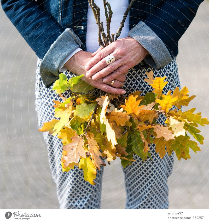 page collection Leisure and hobbies To go for a walk Human being Feminine Woman Adults Female senior 1 45 - 60 years Leaf Pants Jacket Jewellery Ring Blue