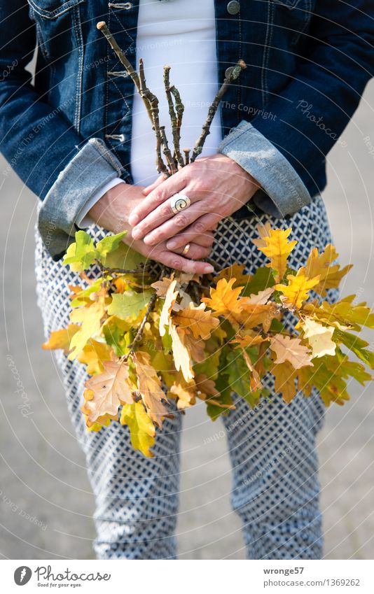 Human being Woman Blue Green White Hand Leaf Adults Yellow Autumn Feminine 45 - 60 years Female senior Bouquet Pants Ring