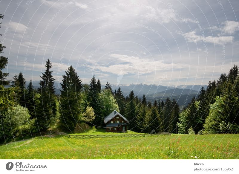 panoramic mountain view Austria Bregenz Mountain range Peak House (Residential Structure) Alpine hut Witch's house Fir tree Forest Tree Coniferous trees Meadow