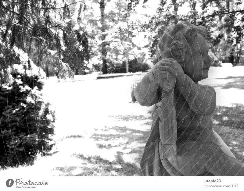 Rammenau Park Black & white photo Exterior shot Detail Deserted Day Contrast Sunlight Back-light Central perspective Profile Looking away Androgynous