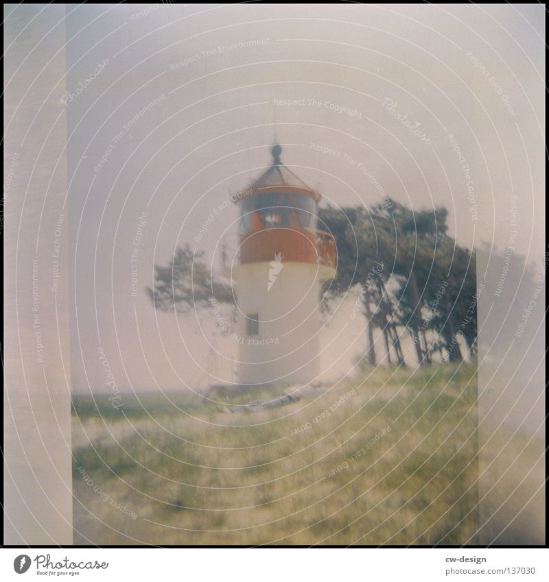 HoolGa | to chill out Holga Multicoloured Dike Coast Grass Common Reed Hiddensee Summer Waves Beach Black Edge White crest Relaxation Sleep Bed Jetty Mole Air