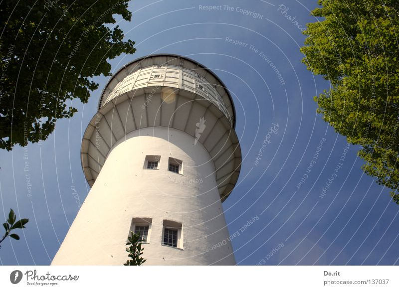 high up Water tower Tree Window Blue sky Green White Tall Round Historic Navigation Neumünster Sky dorite